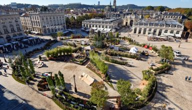 japonica-15eme-edition-du-jardin-ephemere-de-la-place-stanislas-nancy-le-27-septembre-2018-photo-cedric-jacquot-1538070216